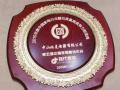 2016年中国电热水器投资风向标 (5)